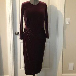 Banana Republic Stretch Velvet Dress